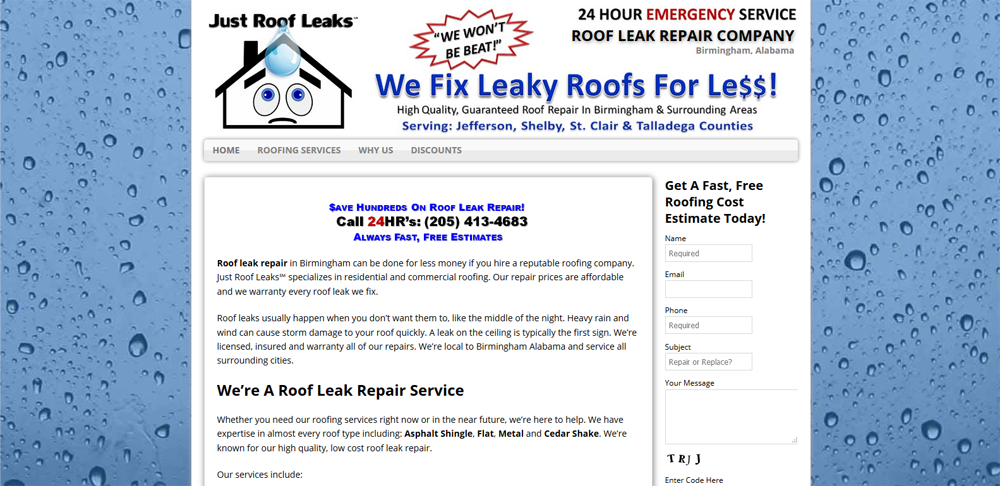 roof repair website design